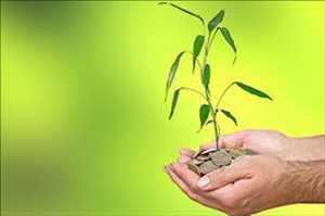 Agriculture Insurance and Reinsurance